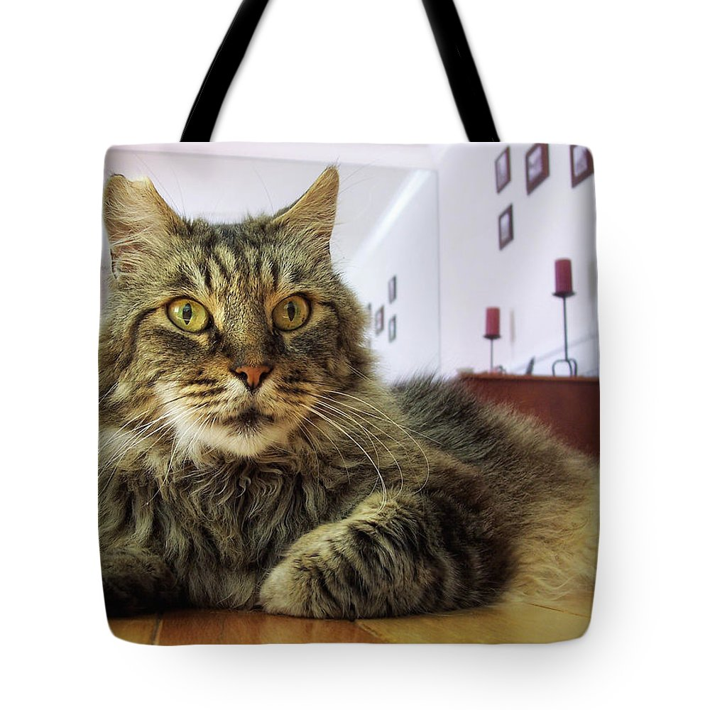 Mouse Tote Bag featuring the photograph I Smell Mouse by Donna Blackhall