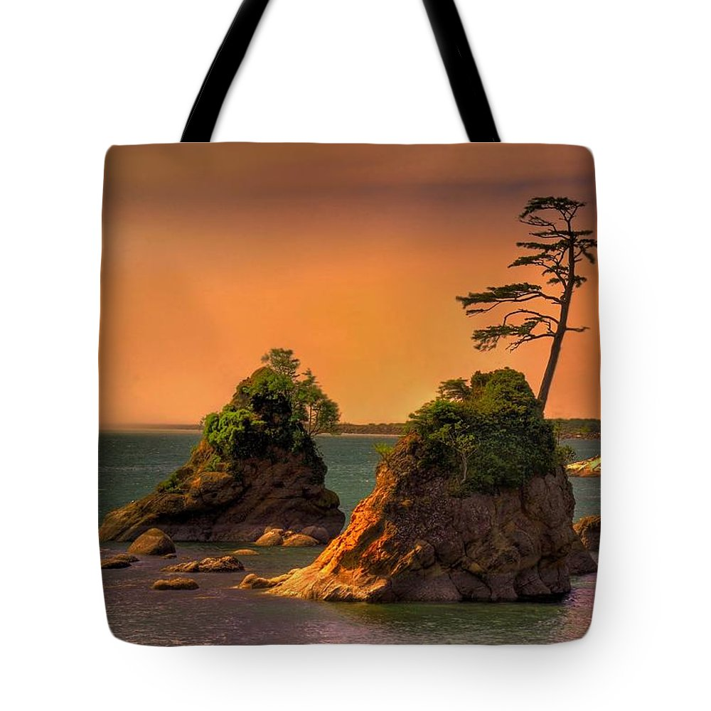 Landscape Tote Bag featuring the photograph I Stand Corrected by John Absher
