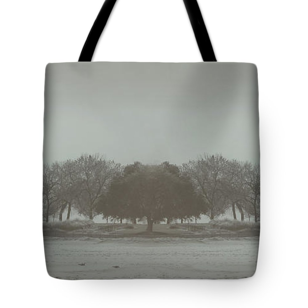 Landscape Tote Bag featuring the photograph I Will Walk You Home by Dana DiPasquale