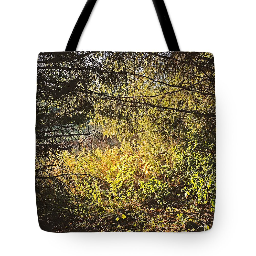 Dusk Tote Bag featuring the photograph I Would Be The Shadow Of Your Light by Asbed Iskedjian