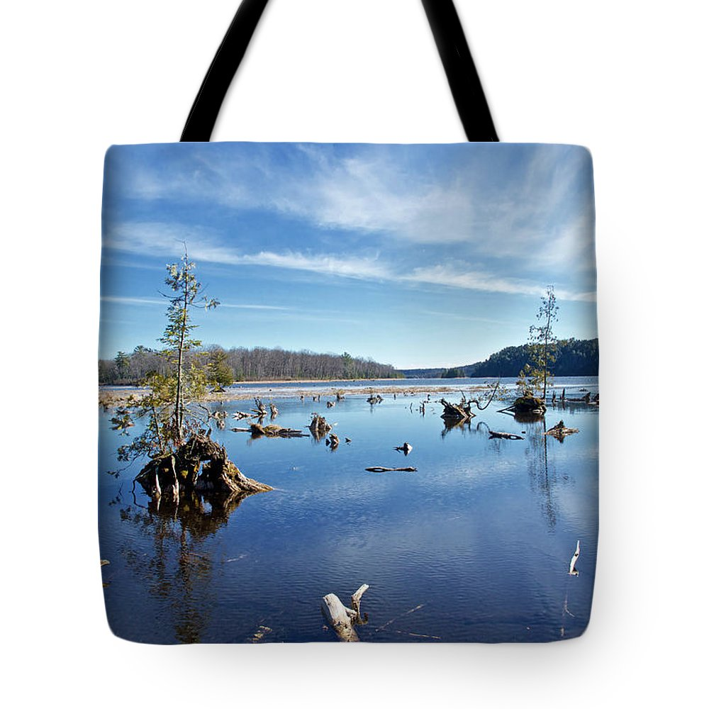 Rugged Tote Bag featuring the photograph Iago Springs 9500 by Michael Peychich