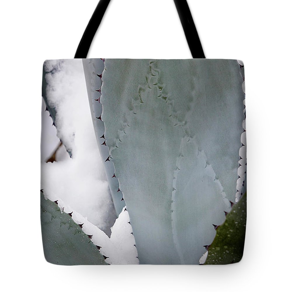 Agave Tote Bag featuring the photograph Ice Blue Agave by Phyllis Denton
