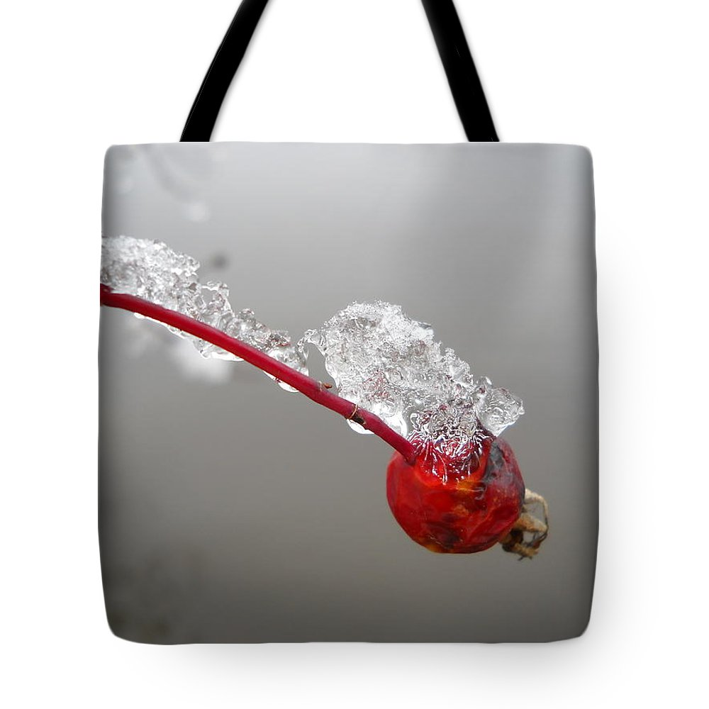 Rose Hip Tote Bag featuring the photograph Ice Covered Wild Rose Hip by Kent Lorentzen