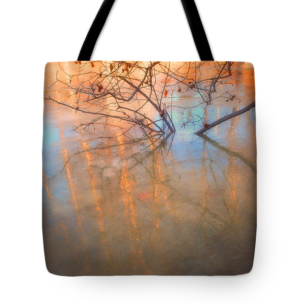 Ice Tote Bag featuring the photograph Ice Reflections 2 by Tara Turner