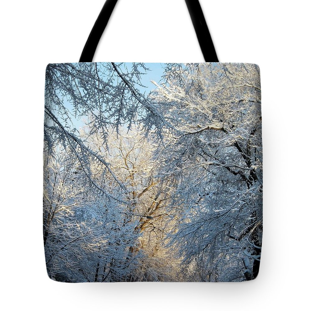 Ice On Trees Tote Bag featuring the photograph Ice Storm On The 6th IIi by Jacqueline Russell