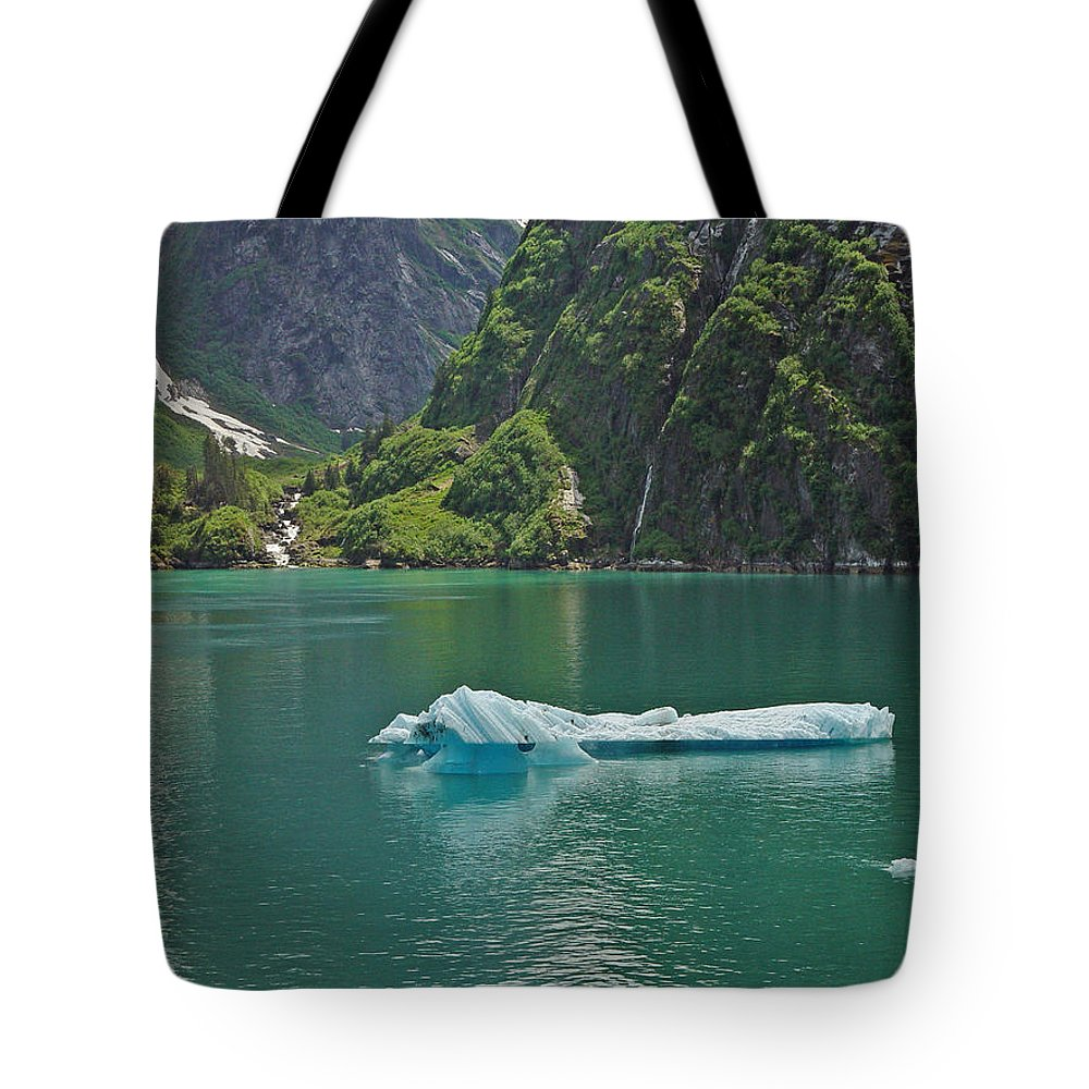 Iceburg Tote Bag featuring the photograph Ice Tracy Arm Alaska by Heather Coen