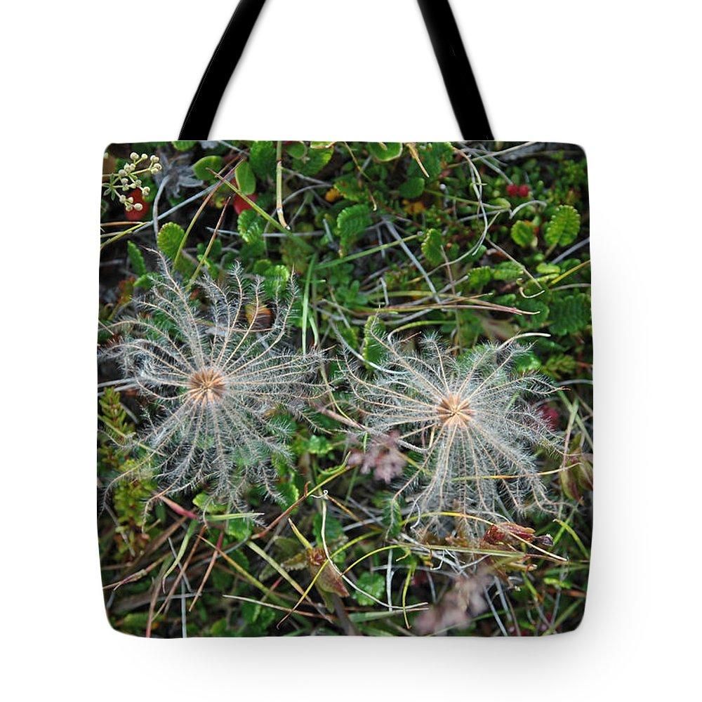 Flora Tote Bag featuring the photograph Icelandic Flora by Deni Dismachek