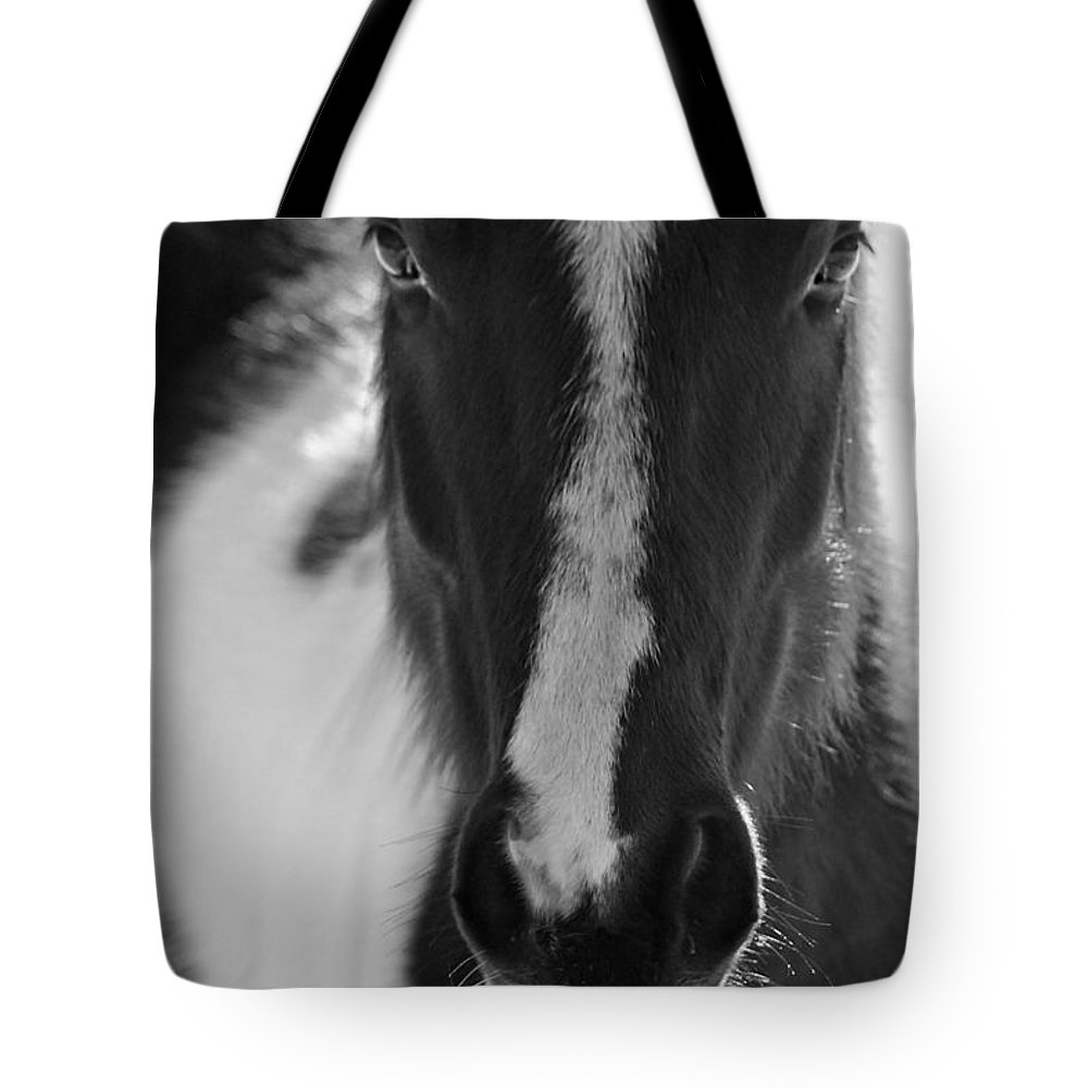 Horse Tote Bag featuring the photograph iContact by Evelina Kremsdorf