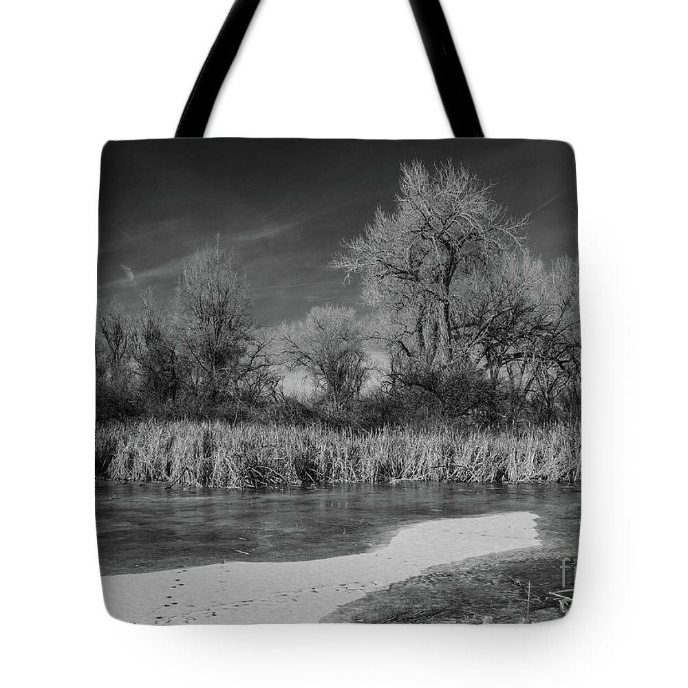 Landscape Tote Bag featuring the photograph Icy Marsh by James Redland Anderson