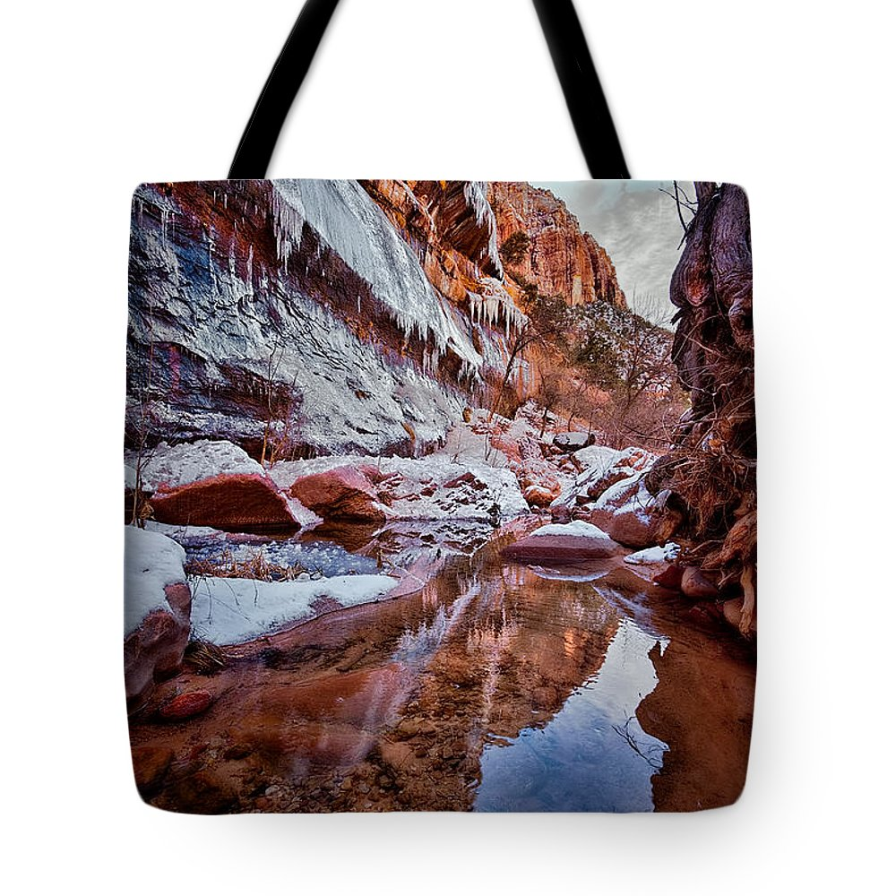 Ice Tote Bag featuring the photograph Icy Stillness by Christopher Holmes