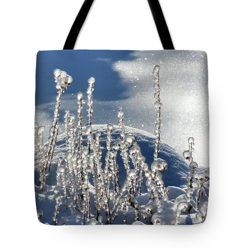 Icy Tote Bag featuring the photograph Icy World by Doris Potter