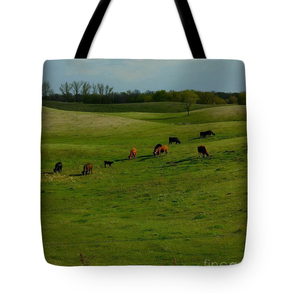 Cows Tote Bag featuring the photograph Idyllic Cows In The Hills by Curtis Tilleraas