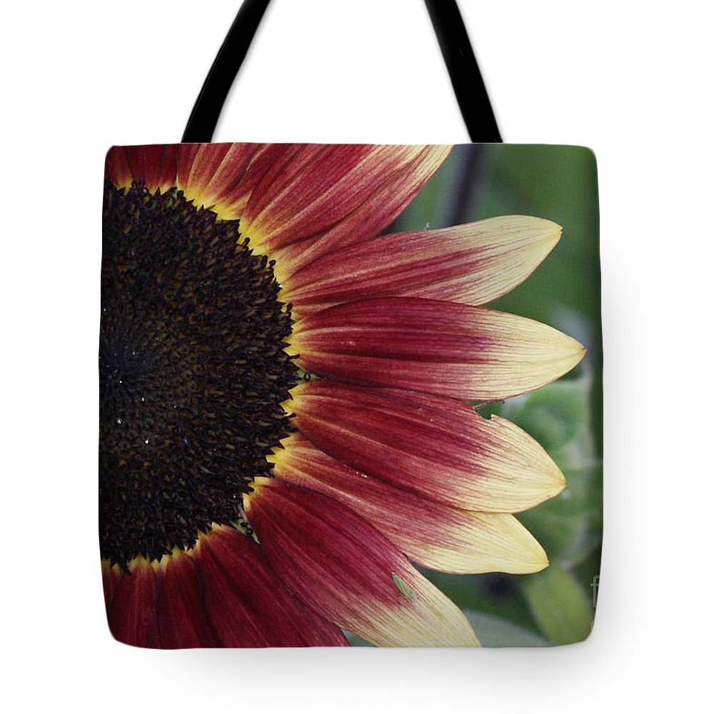 Photography Tote Bag featuring the photograph If It Makes You Happy by Shelley Jones