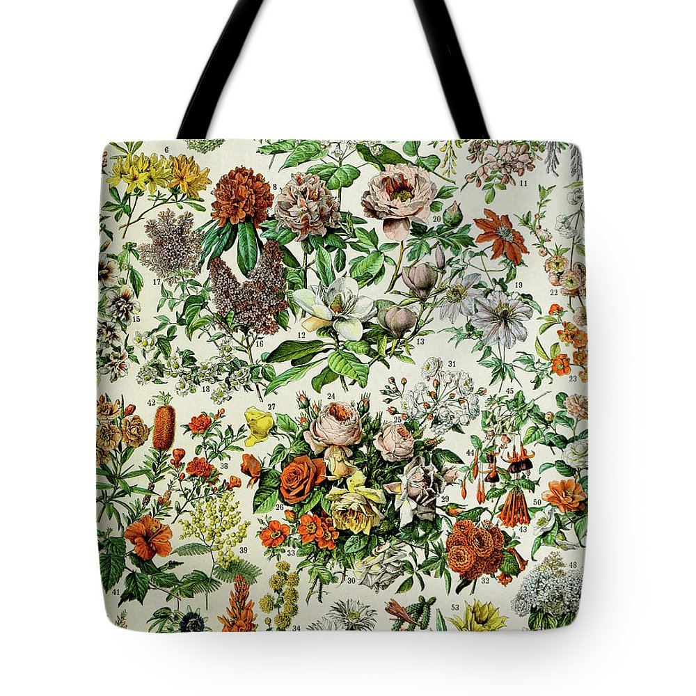 Floral Tote Bag featuring the drawing Illustration Of Flowering Plants by Adolphe Philippe Millot