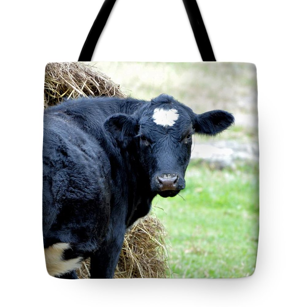 Animals Tote Bag featuring the photograph I'm Looking Through You by Jan Amiss Photography