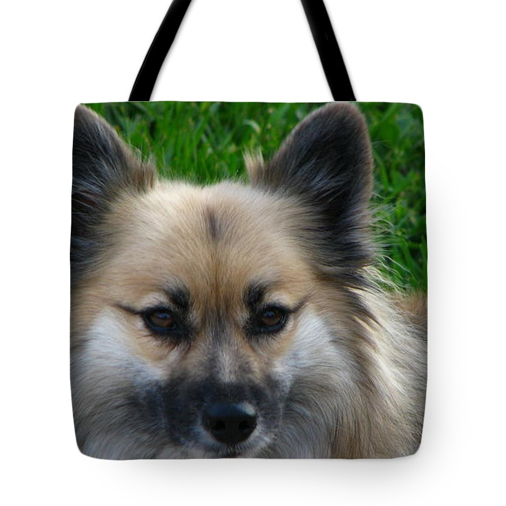 Patzer Tote Bag featuring the photograph Im Swedish by Greg Patzer