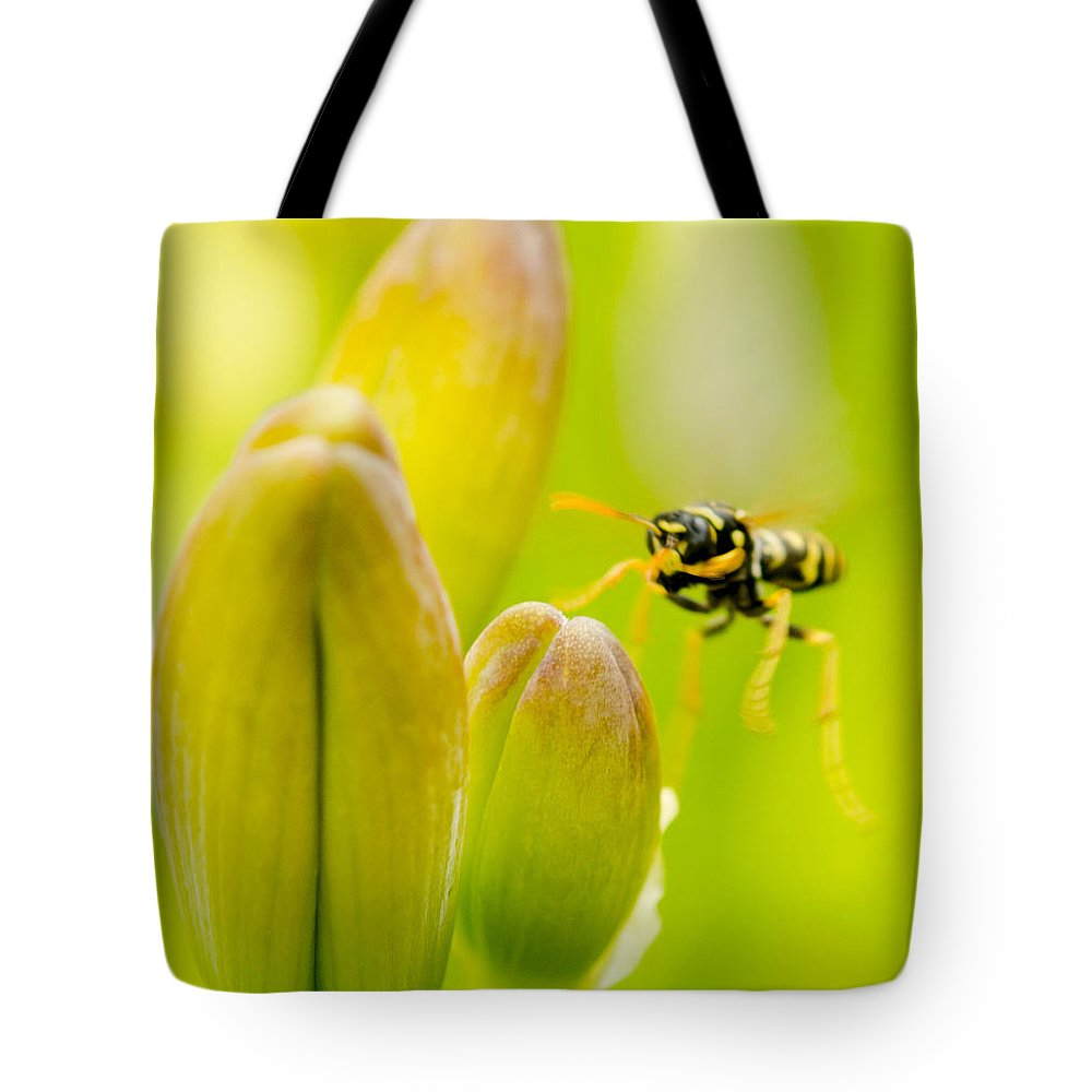 Lillies Tote Bag featuring the photograph Imminent Landing by Kathy Paynter