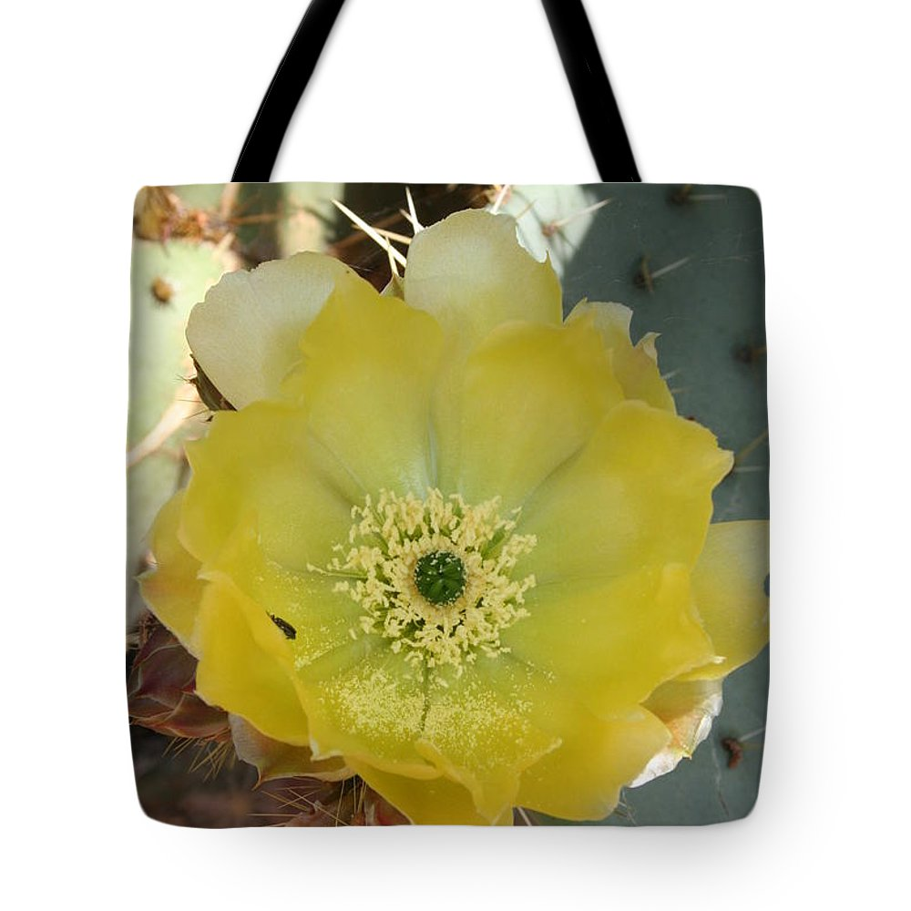 Cactus Tote Bag featuring the photograph Impressive Beauty by Christiane Schulze Art And Photography