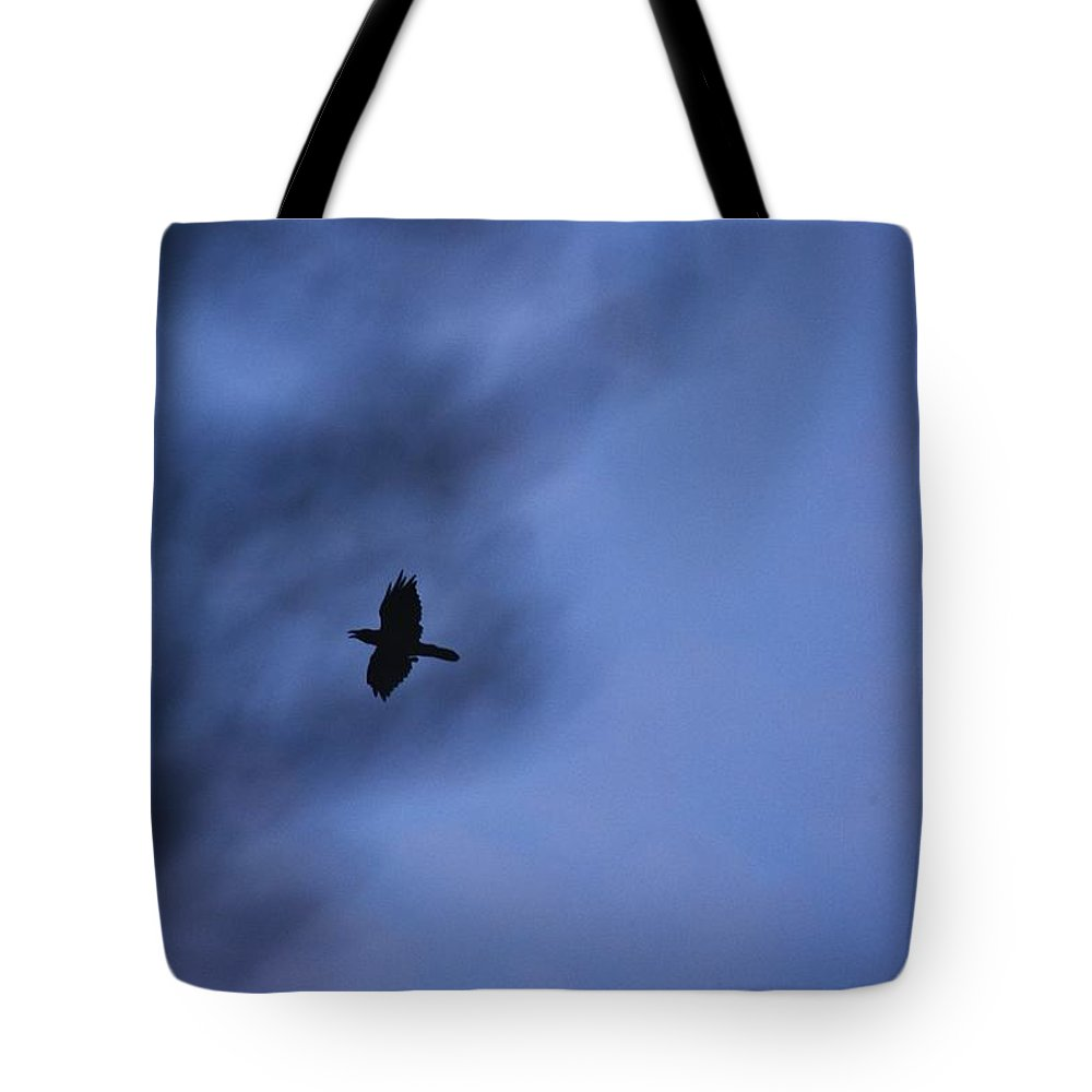 Linda Brody Tote Bag featuring the photograph In Flight At Dusk by Linda Brody