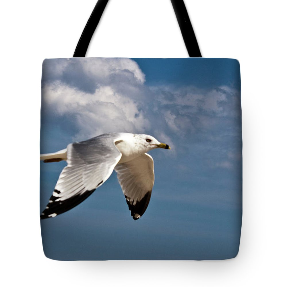 Bird Tote Bag featuring the photograph In Flight by Donna Walsh