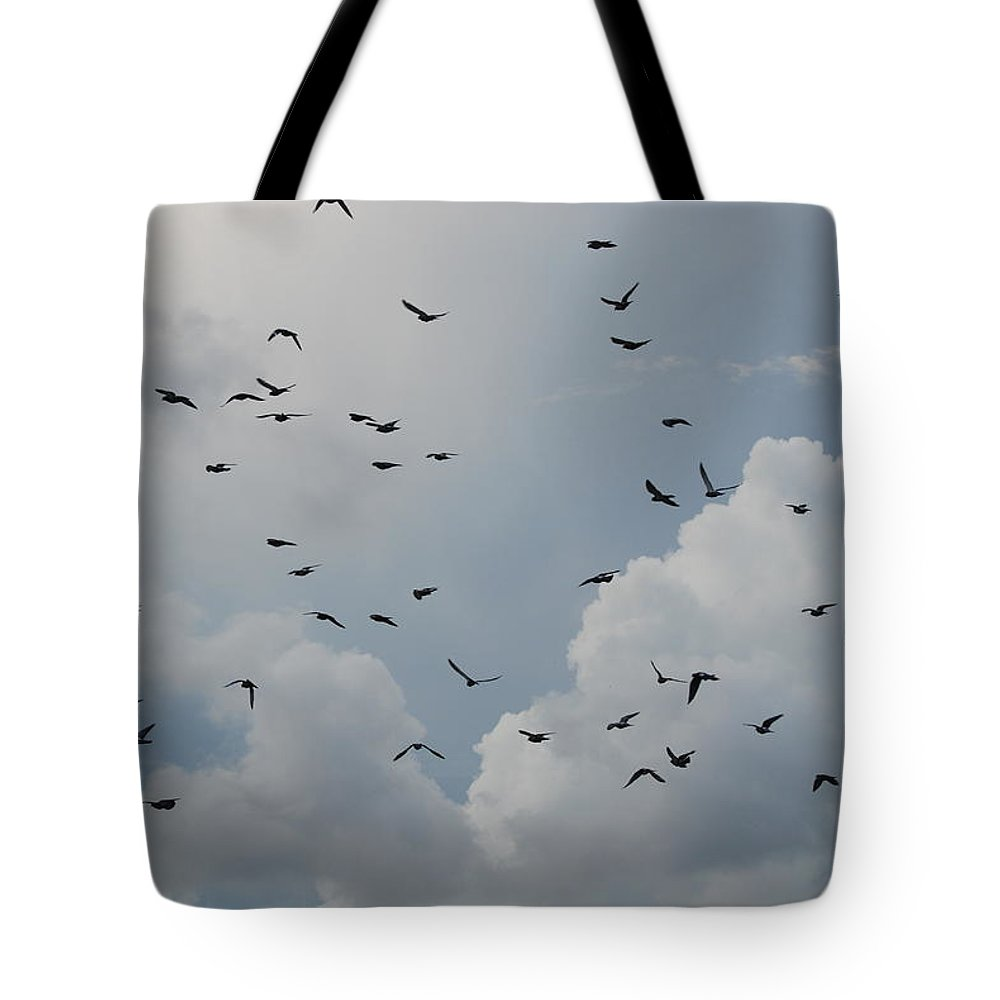 Birds Tote Bag featuring the photograph In Flight by Rob Hans