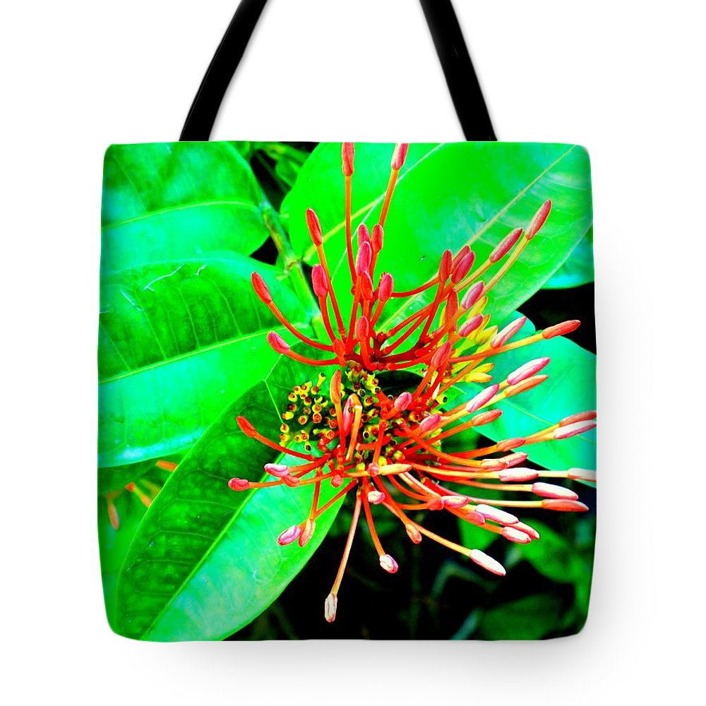 Flower Tote Bag featuring the photograph In My Garden by Ian MacDonald