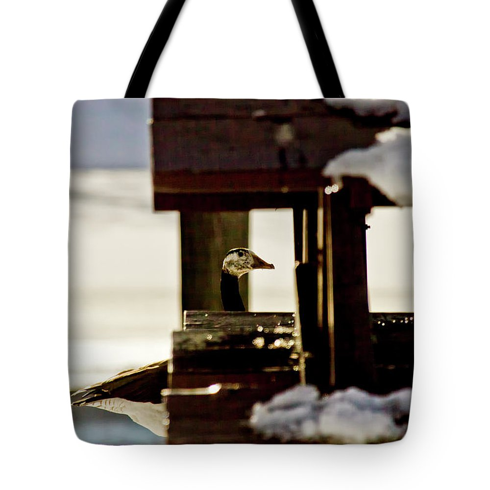 Goose Tote Bag featuring the photograph In Plain Sight by Albert Seger