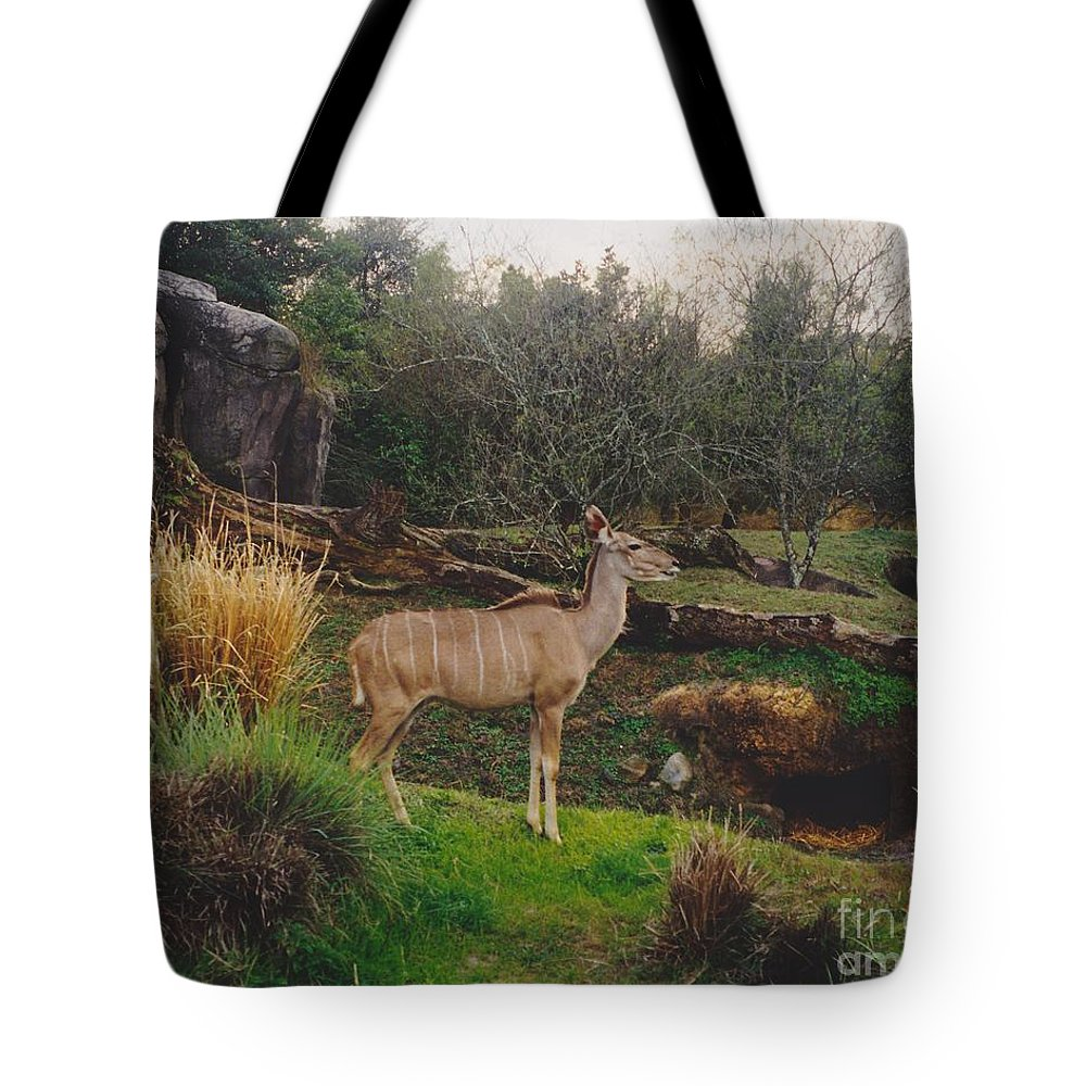 Scenery Tote Bag featuring the photograph In The Jungle by Michelle Powell