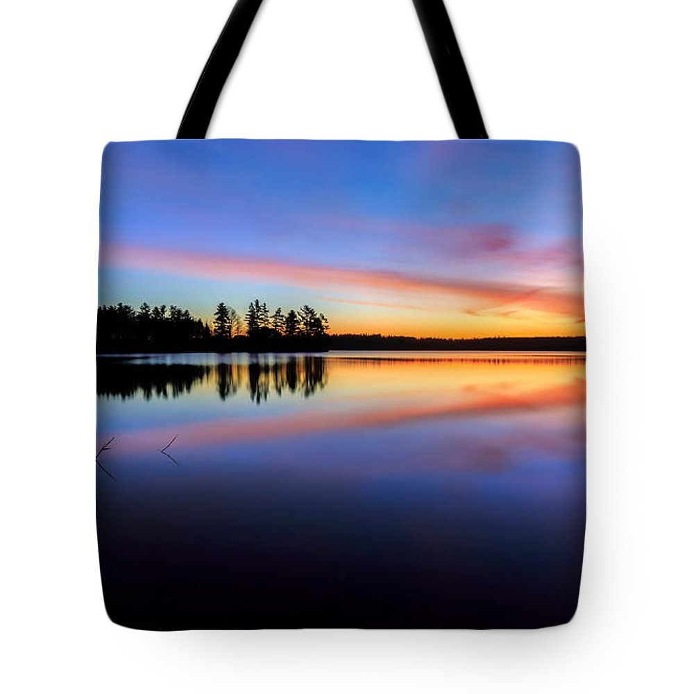 Reflection Tote Bag featuring the photograph In The Moment by Bill Wakeley
