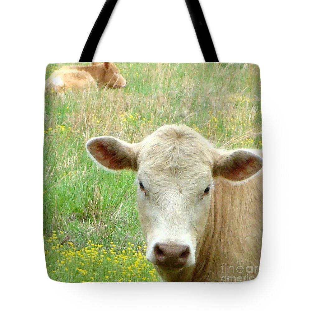 Kathy Bucari Tote Bag featuring the photograph Posing In The Pasture by Kathy Bucari