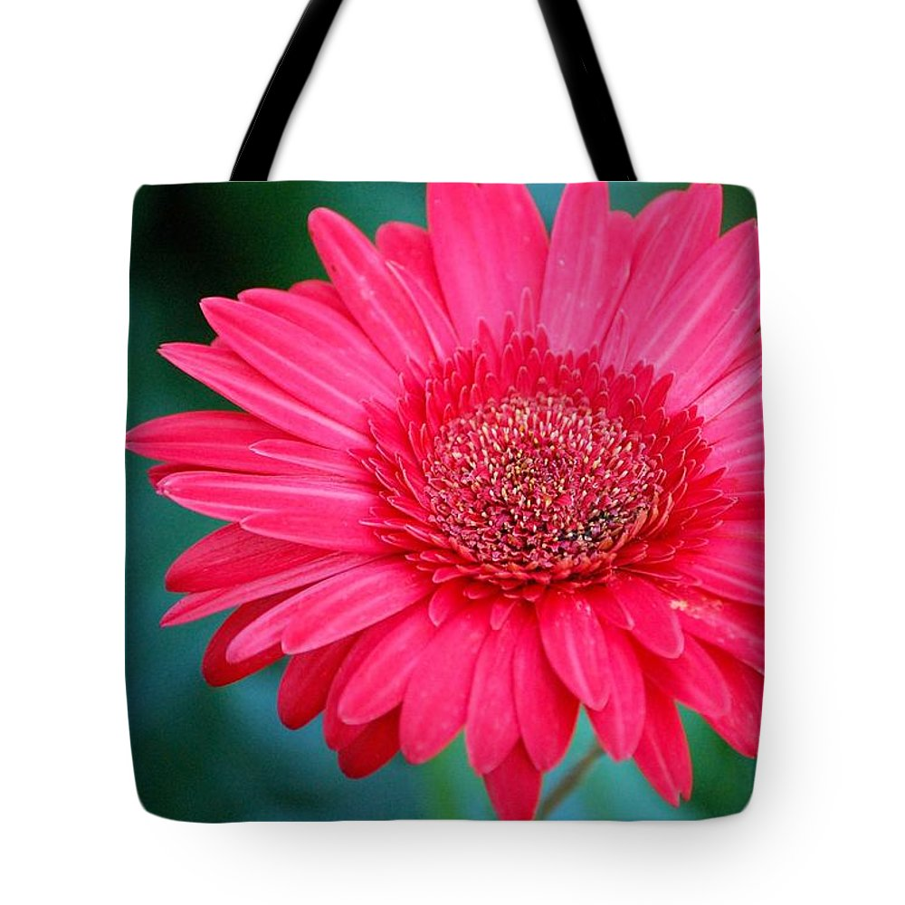 Gerber Daisy Tote Bag featuring the photograph In The Pink by Debbi Granruth