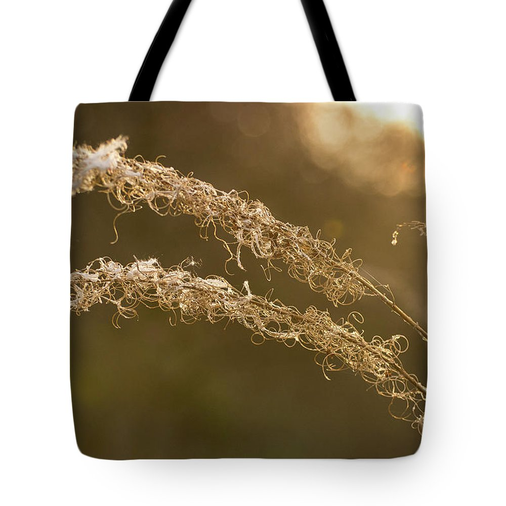 Sunset Tote Bag featuring the photograph In The Sunset Light by Silviu Dascalu