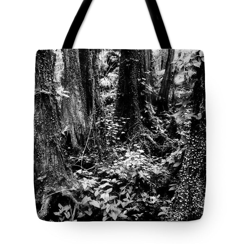 Forest Tote Bag featuring the photograph In Thick by David Lee Thompson