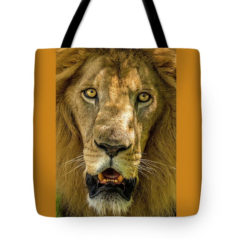 Lion Tote Bag featuring the photograph In Your Face by Tito Santiago