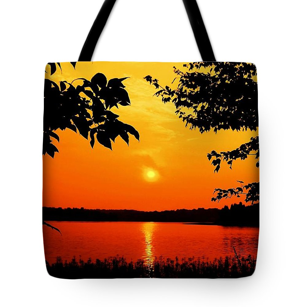 Landscape Tote Bag featuring the photograph Indelible Impression by Mitch Cat