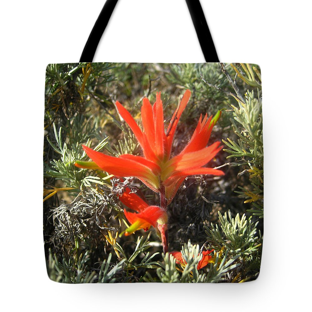 Wildflower Tote Bag featuring the photograph Indian Paintbrush And California Sage by Andrea Freeman