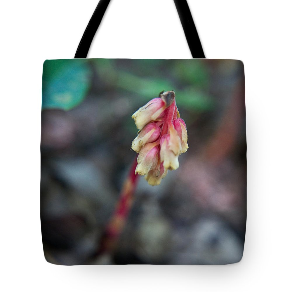 Cove Tote Bag featuring the photograph Indian Pipe 1 by Douglas Barnett