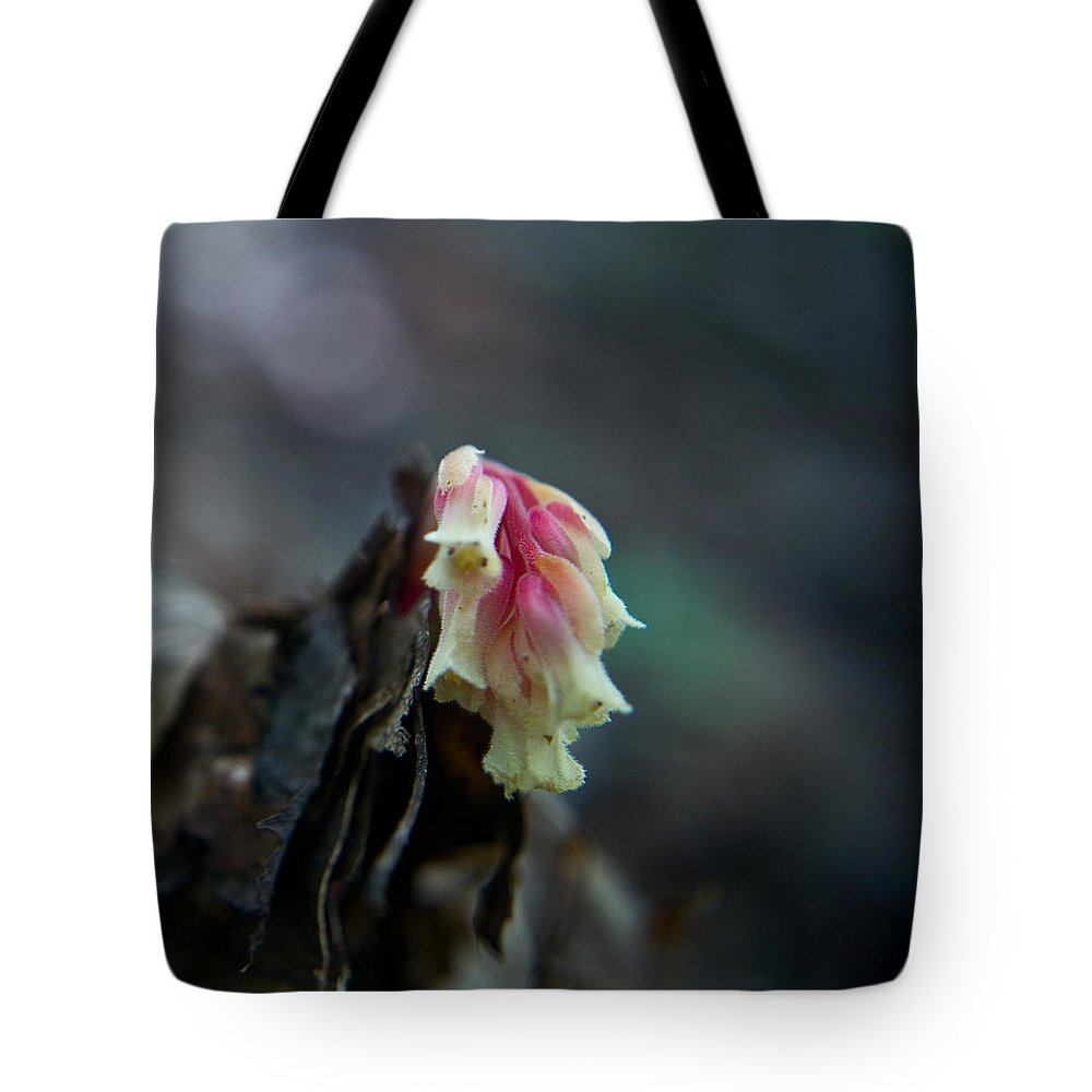 Cove Tote Bag featuring the photograph Indian Pipe 2 by Douglas Barnett