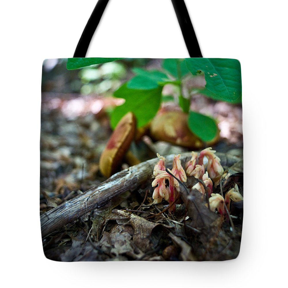 Cove Tote Bag featuring the photograph Indian Pipe 6 by Douglas Barnett