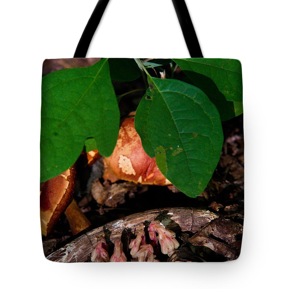 Cove Tote Bag featuring the photograph Indian Pipe 7 by Douglas Barnett