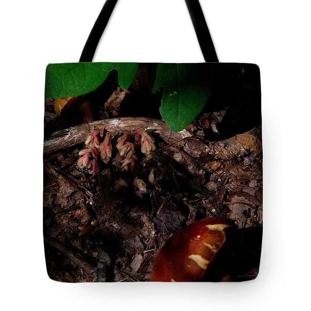 Cove Tote Bag featuring the photograph Indian Pipe 8 by Douglas Barnett