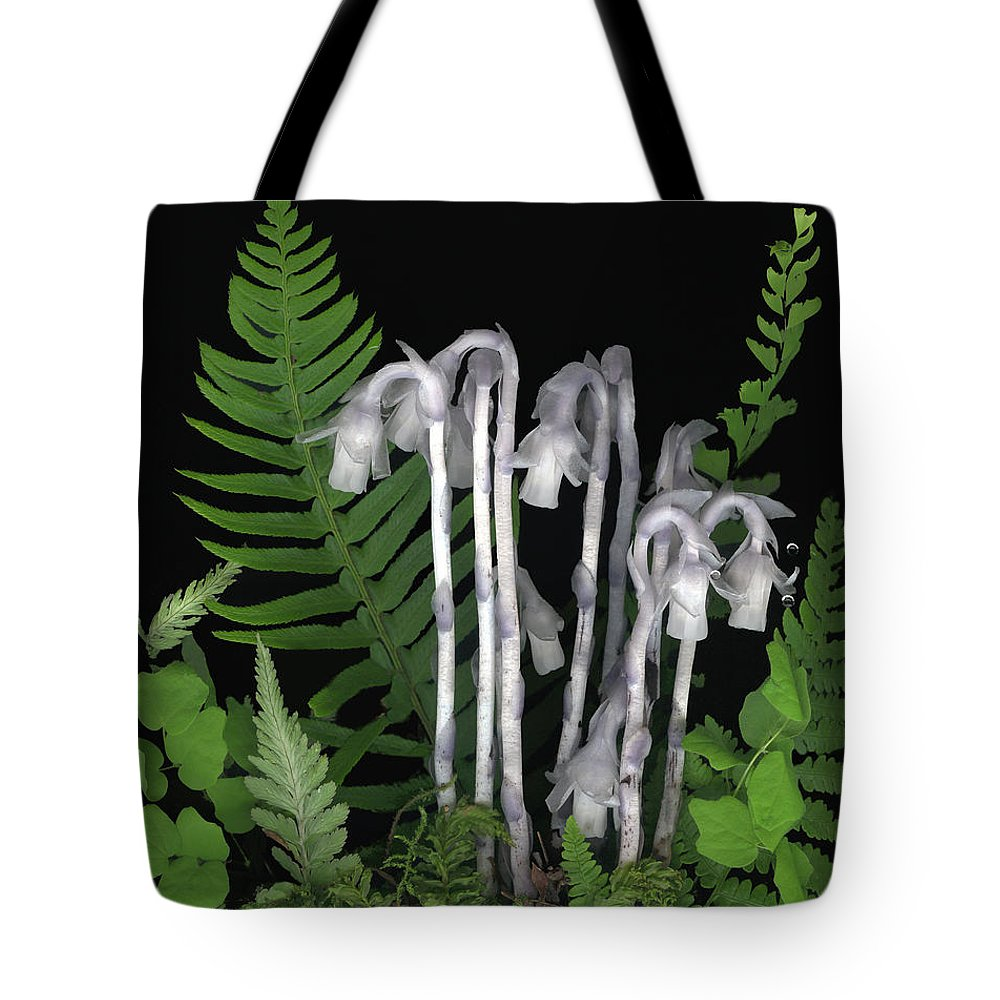 Monotrop Unifolora Tote Bag featuring the photograph Indian Pipe by Sandi F Hutchins