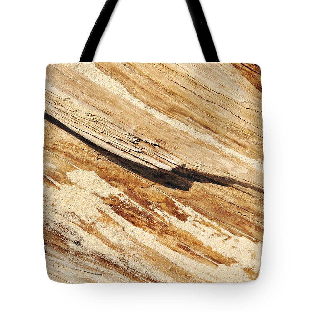 Indiana Dunes Driftwood Tote Bag for Sale by Kyle Hanson