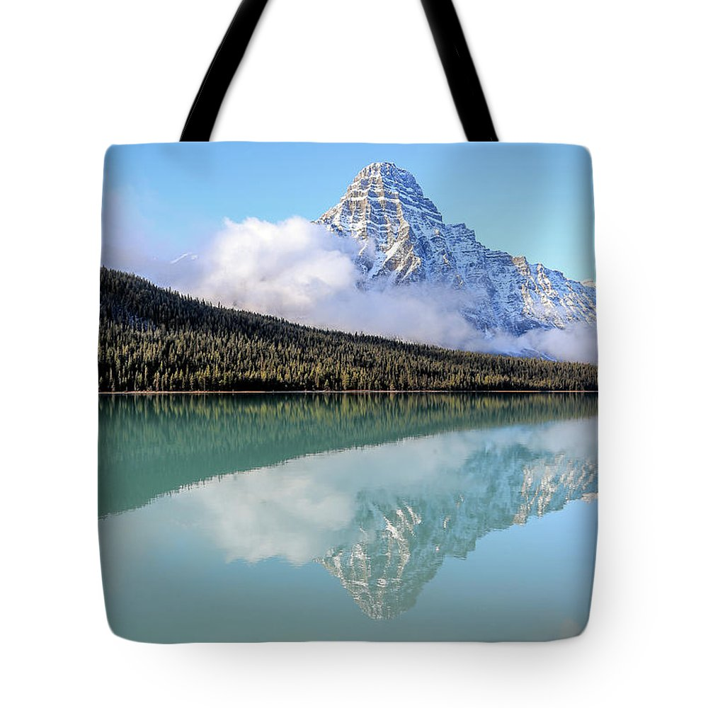 Waterfowl Photographs Tote Bags