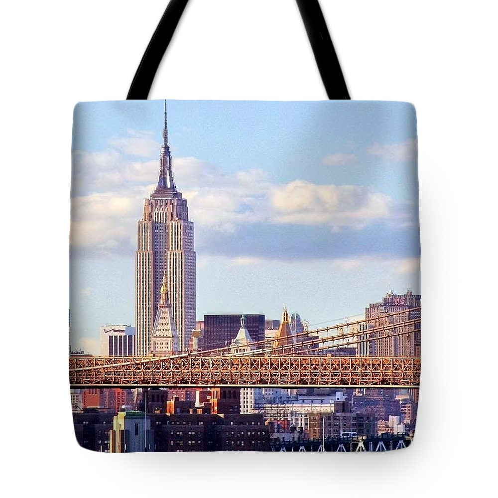 Empire State Building Tote Bag featuring the photograph Inhabited Sculpture by Mitch Cat