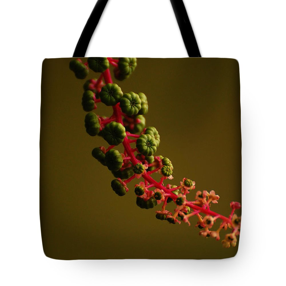 Inkberries Tote Bag featuring the photograph Inkberry Strand by Jean Booth