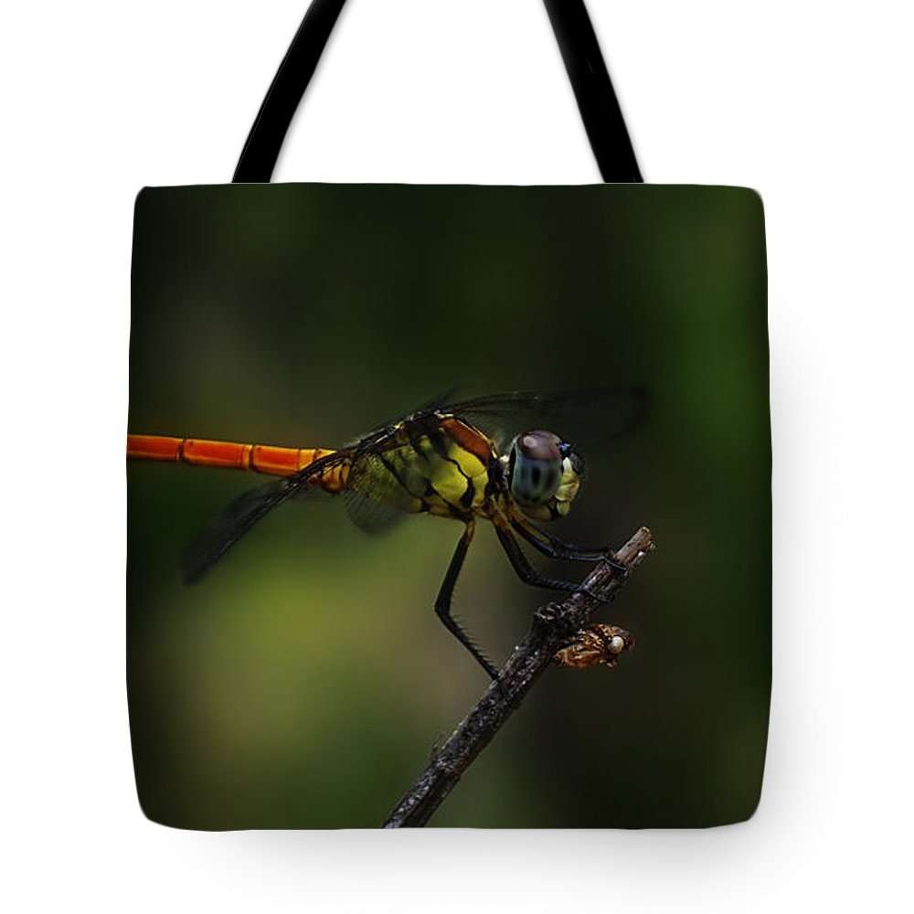 Insect Tote Bag featuring the photograph Insect 1 by Ben Yassa