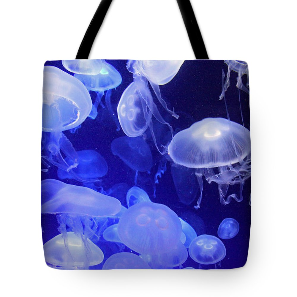 Jellyfish Tote Bag featuring the photograph Intangible Realities by Mitch Cat