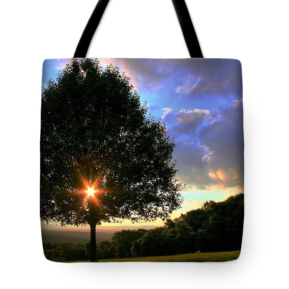 Landcape Tote Bag featuring the photograph Integrity by Mitch Cat