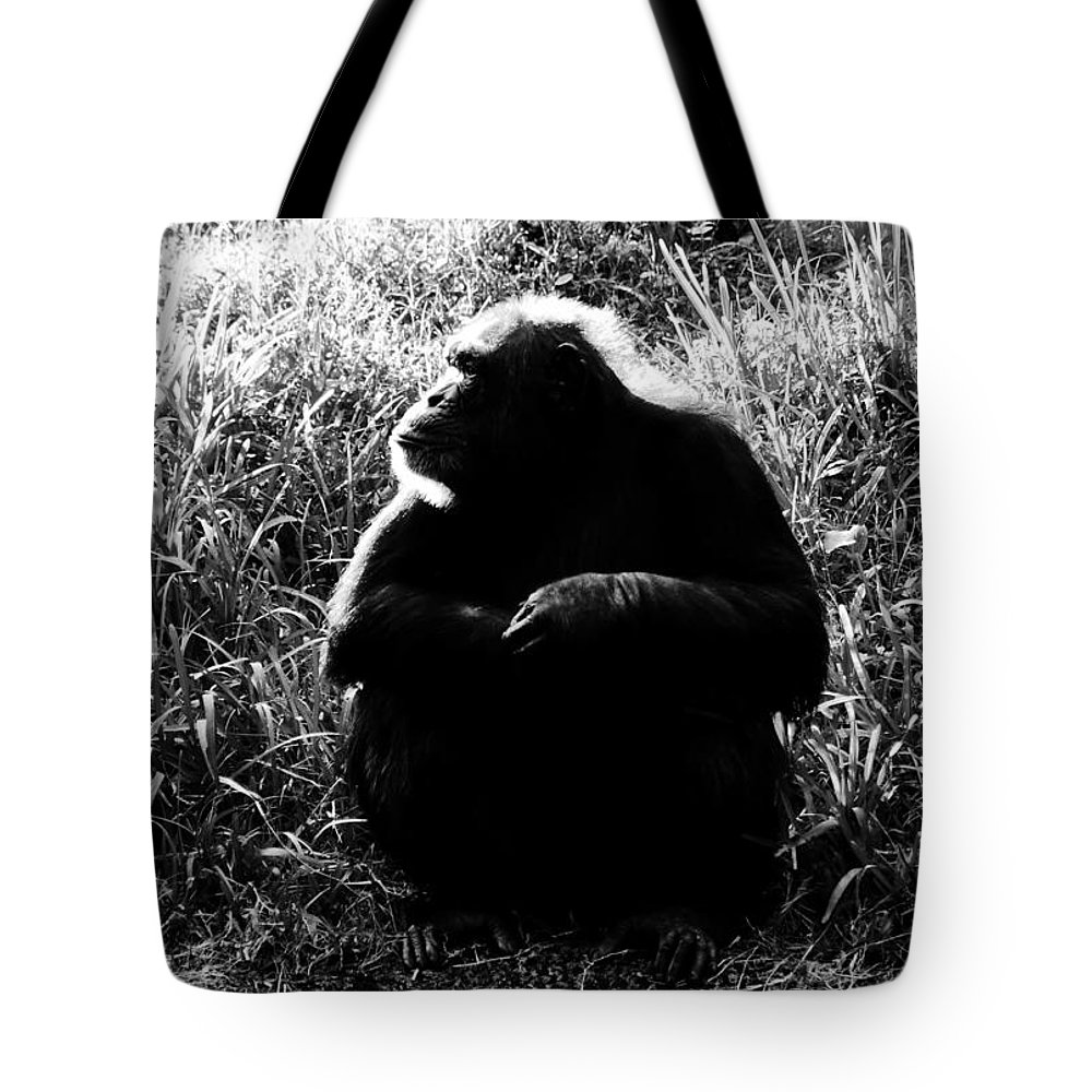 Smart Tote Bag featuring the photograph Intelligence by David Lee Thompson